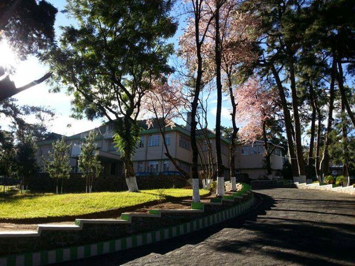 IIM Shillong Summer Placements